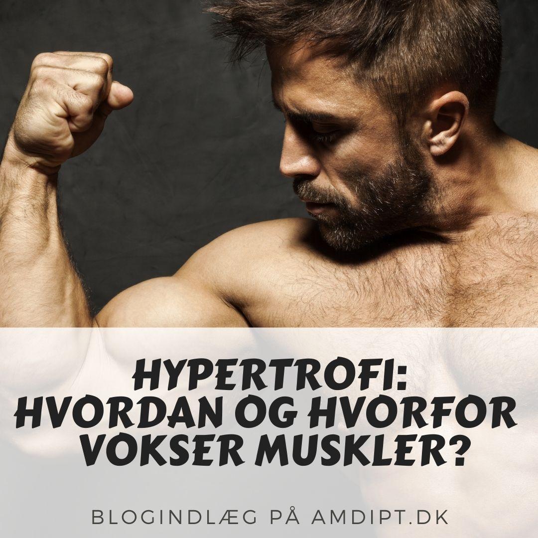 hypertrofi
